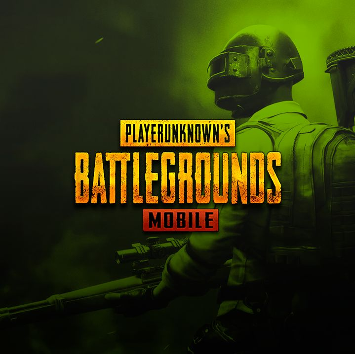 DO NOT RANDOMLY SHOOT! TAKE A LOOK AT THE ROLES ON PUBGM FIRST!